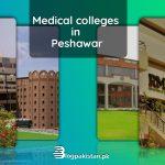 Medical Colleges in Peshawar.